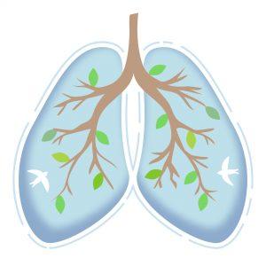 za zdrava pljuča Zaper Zaperino in hren za dihanje