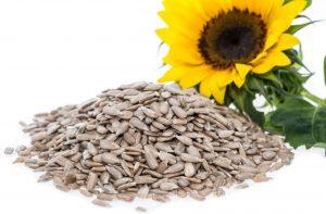 glutation je antioksidant za zdravje skupaj z Zapper Zaper Zaperino terapijo