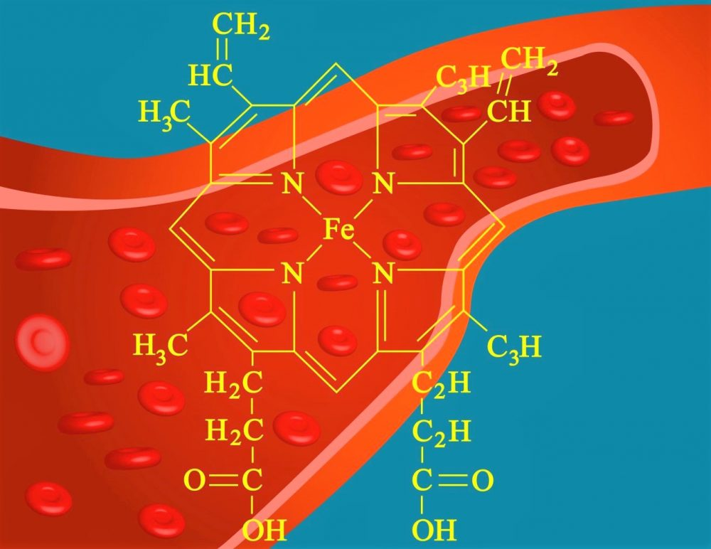 bin v rdečih krvnih celicah bolj sprejema kisik pod vplivom geo impulzov Bionis in Zapper Zaper Zaperino